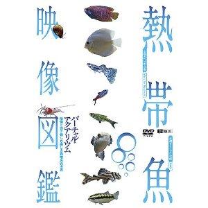 熱帯魚映像図鑑(DVD) バーチャル・アクアリウム 映像と音で愉しむ美しき熱帯魚の世界 (株)シンフォレスト